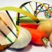 >>OGM, l'Italia comunica all'Europa il divieto di coltura su tutto il territorio