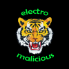 Electro Malicious - First demo