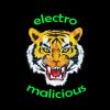 Electro Malicious - First demo