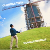 Gianluca Testa – Nomade digitale