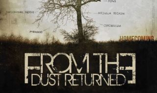 Intervista a From the dust returned