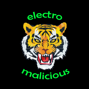 Electro Malicious – First demo